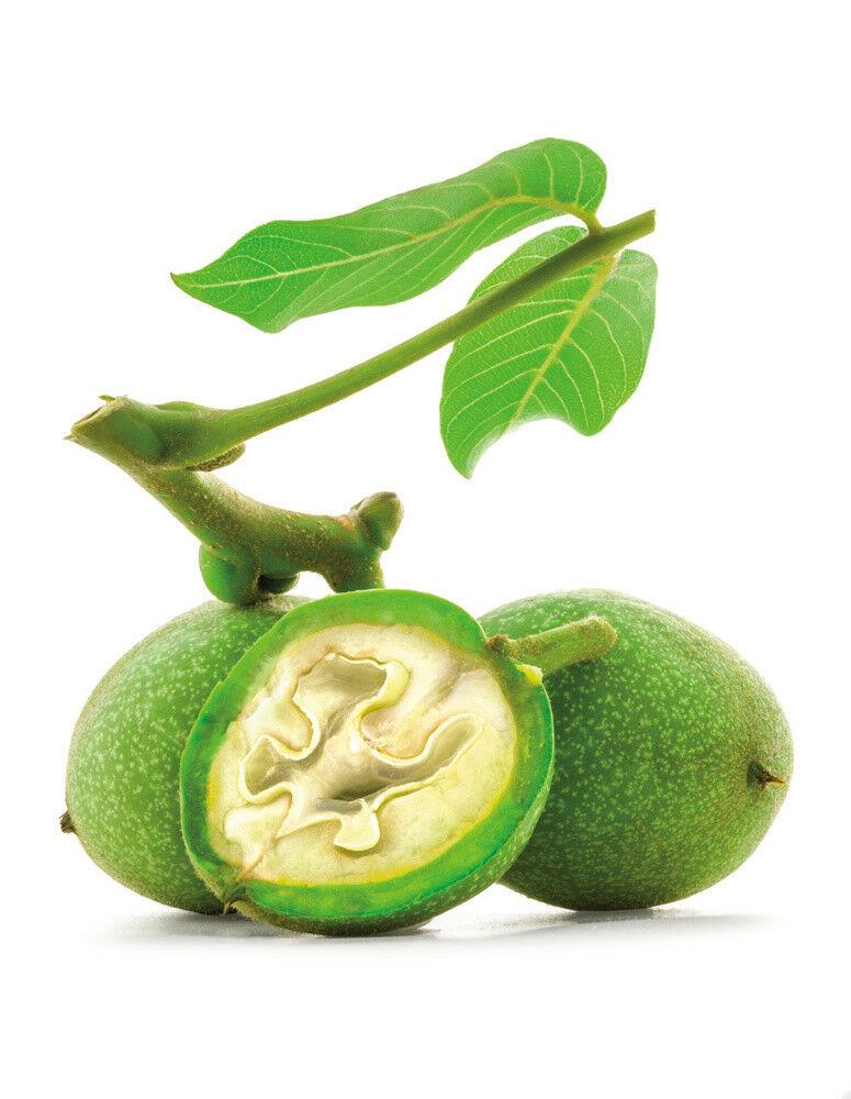 A zöld dió hatásai
