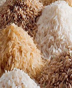 rizsliszt