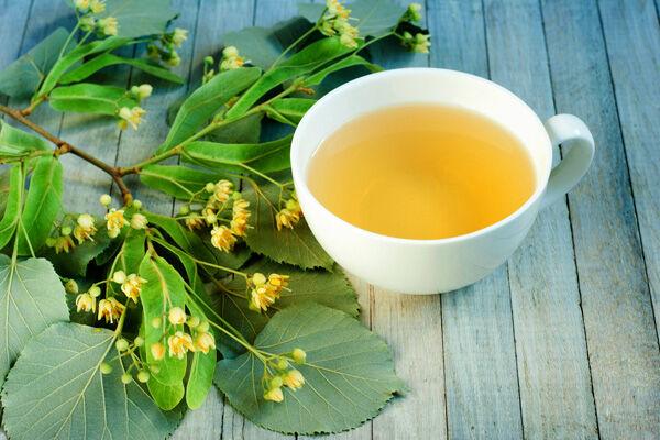 A fa felhasználható részét, a virágokat júniusban gyűjtik be, röviddel a kinyílásuk után, mert az első 3 napon adják a leghatékonyabb teafüvet.
