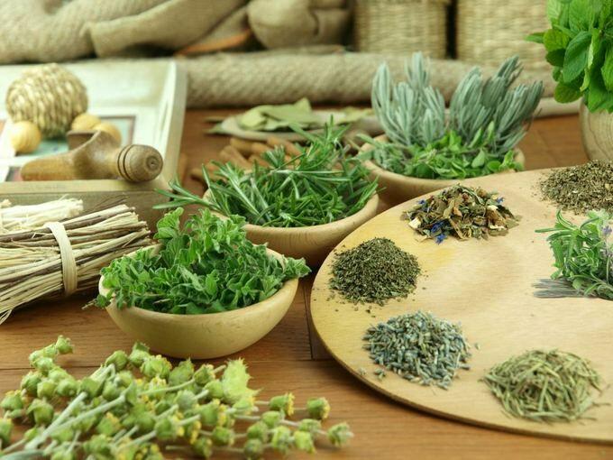 A fűszernövényeket a konyhában ételeink ízesítésére használjuk, pedig egészségünkre is jótékony hatást gyakorlatnak.