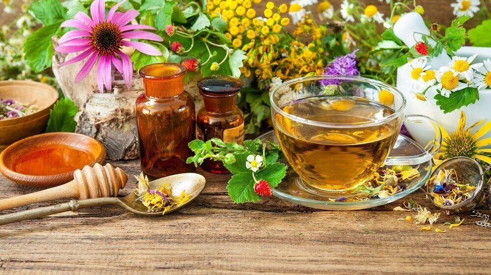 A 10 legjobb gyógynövény ami nem hiányozhat a házi patikából