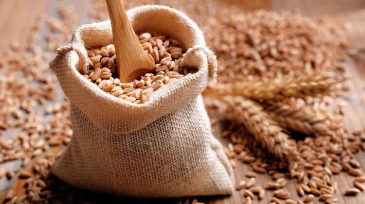 Ismerd meg a legjobb fehérjeforrásokat