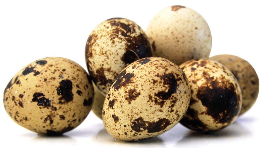 A legegészségesebb tojásfajta a fürjtojás