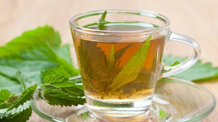 Csalán tea fogyasztása