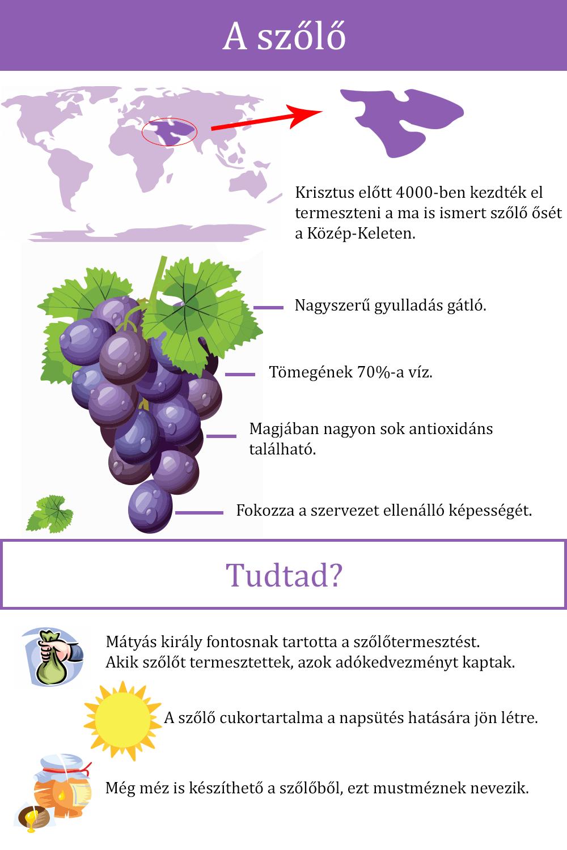 Ezeket biztosan nem tudtad a szőlőről