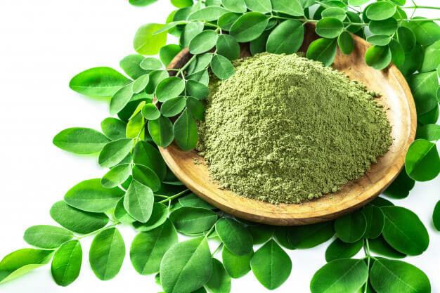 A moringa por adagolása és nagyszerű hatásai