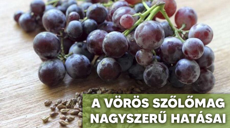 A vörös szőlőmag hatása