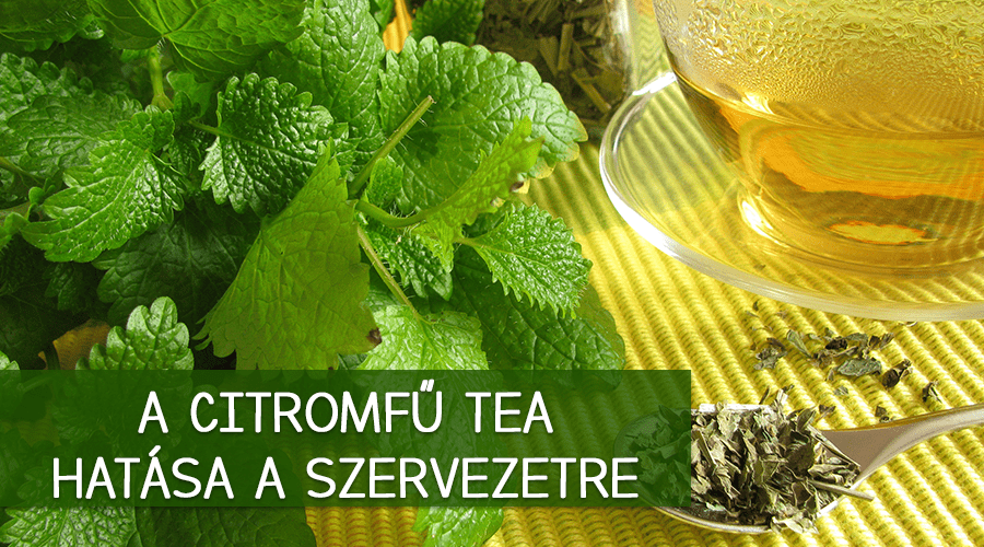 A citromfű tea hatása a szervezetre
