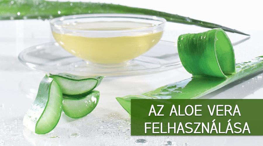 Az aloe vera felhasználása. A növény frissen levágott leveléből nyerik. A gélt meg lehet inni, rengeteg jótékony hatást kifejtve ezáltal.