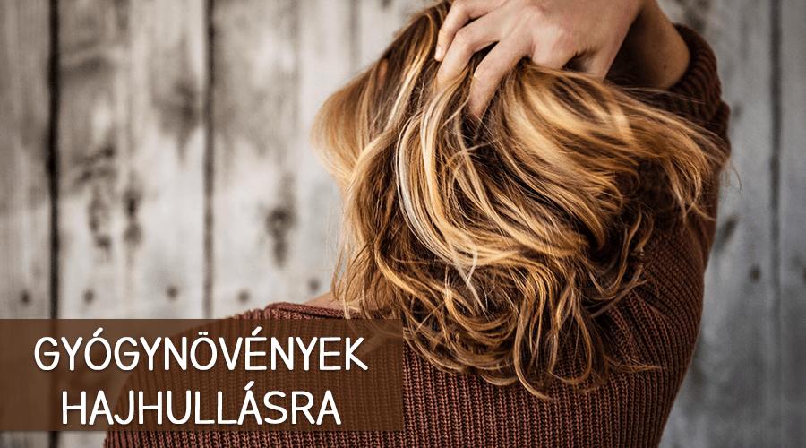 Gyógynövények hajhullásra. Mezei zsurló: Nagyon elterjedt Magyarországon ez a gyógynövény, és leginkább vesetisztítóként és vízhajtóként használják.