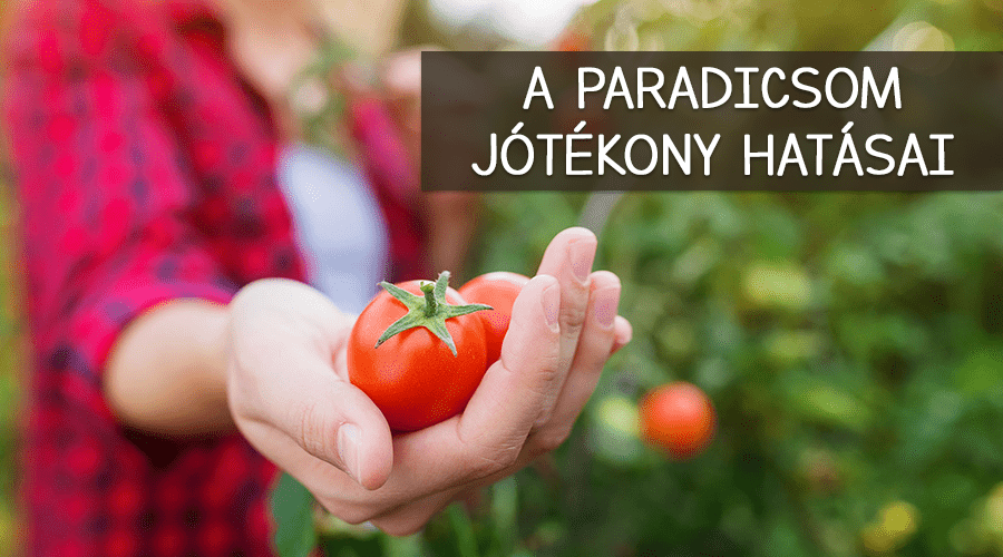Mi mindenre jó a paradicsom?