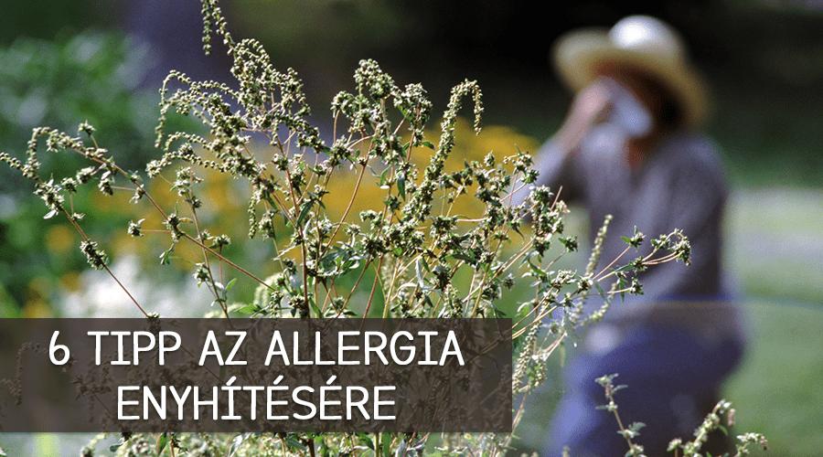 6 tipp az allergia enyhítésére
