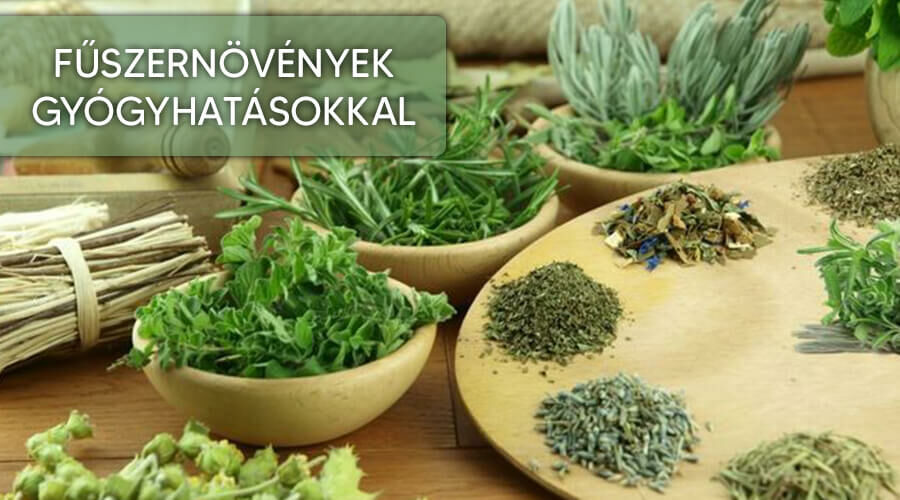 A fűszernövények amelyek gyógynövények is.