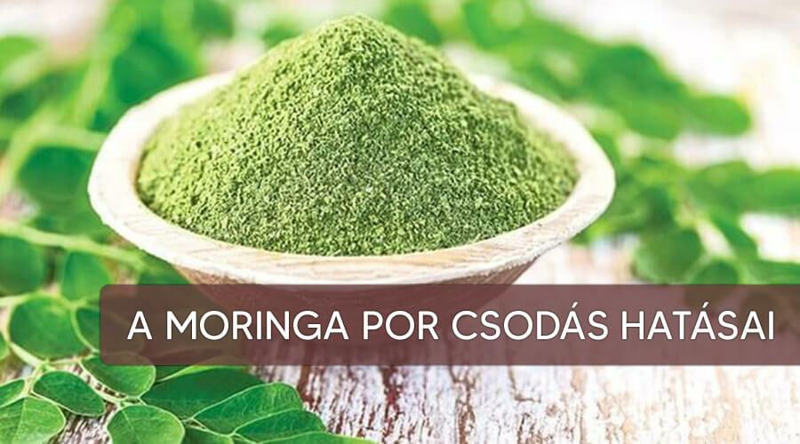 A moringa por elképesztő hatásai!
