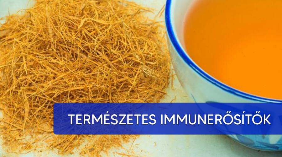 A legjobb természetes immunerősítők listája