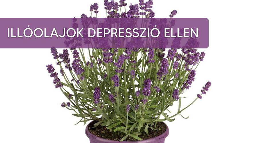 Illóolajok depresszió ellen