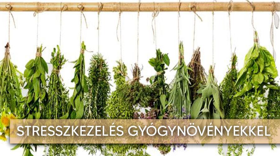 A legjobb stresszkezelő gyógynövények.