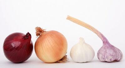 Illata jellegzetesen erős, az íze pedig csípős. Tartalmaz A-, B1-, B2-, B3- és C-vitamint, és az ásványi anyag-tartalma is jelentős.