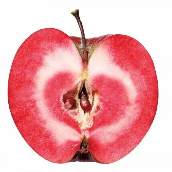 Az alma javítja az emésztést.