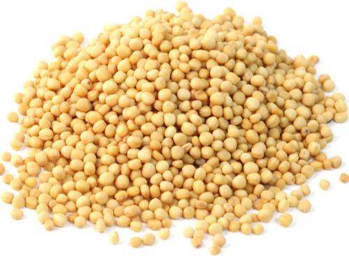 Ismerd meg a fehér mustárt. Magas a szelén- és a triptofán-tartalma, és csökkenti az étvágyat is. Ajánlott vele kiegészíteni a fogyókúrát.