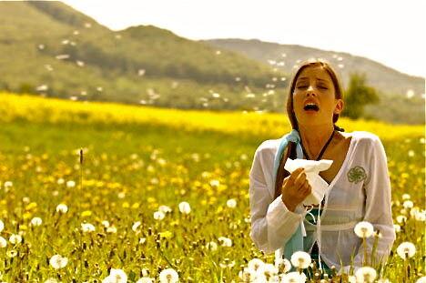 Pollenveszély elleni védekezés.