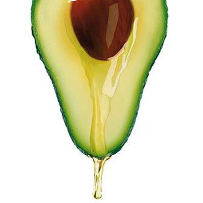 Az aminosavak 70%-a az avokádó magjában található. A magjából kinyert olaj csökkenti a koleszterinszintet, és nagyban segít megelőzni a szív- és érrendszeri betegségeket.