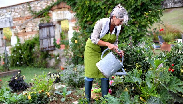 Néhány tipp kerti munka elvégzéséhez.