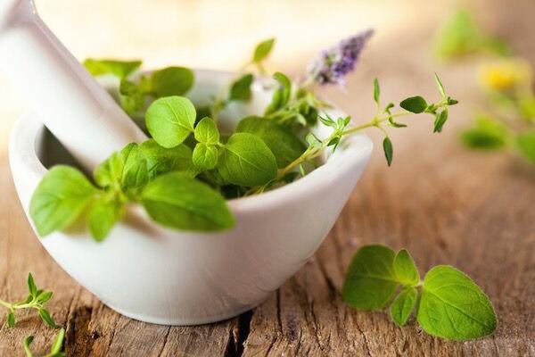 Gyógynövények használata idős korban