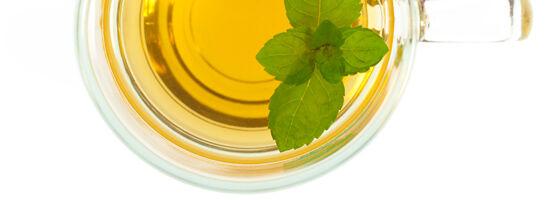 Gyógynövények emésztési zavarokra