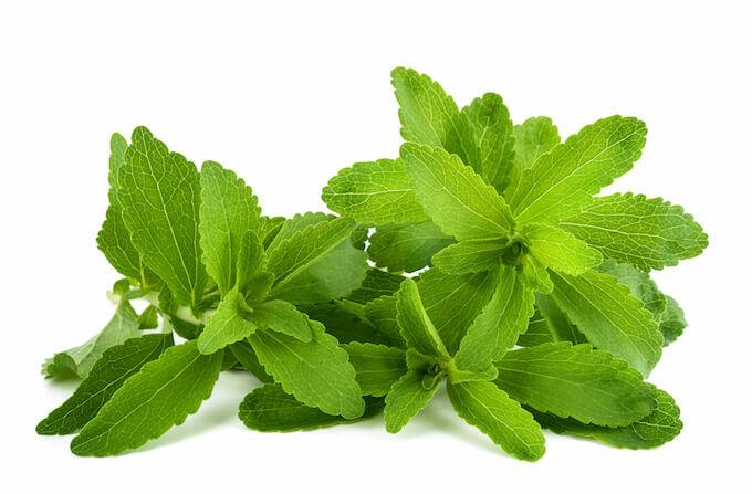 Stevia az édes gyógynövény. A steviát használhatjuk külsőleg és belsőleg egyaránt. Külsőleg akne, ekcéma, dermatitis kezelésére igen hatékony.
