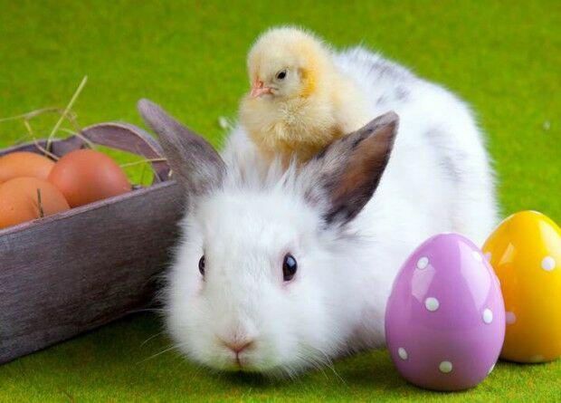 Húsvéti ételek az országokban.