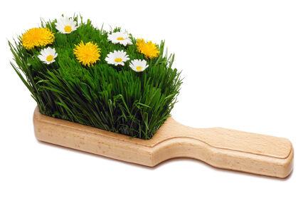 Tavaszi nagytakarítás fontossága.