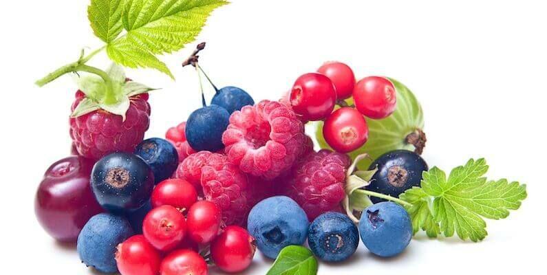 A flavonoidok fontos szerepe. Nagy szerepet játszanak abban, hogy a szervezet egészséges maradjon.