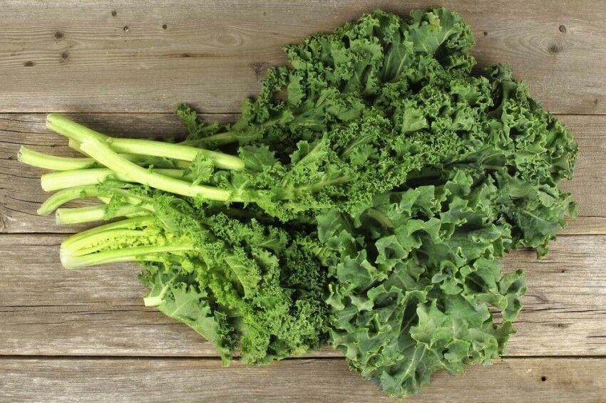 Lúgosító zöldségek - Fodros kel