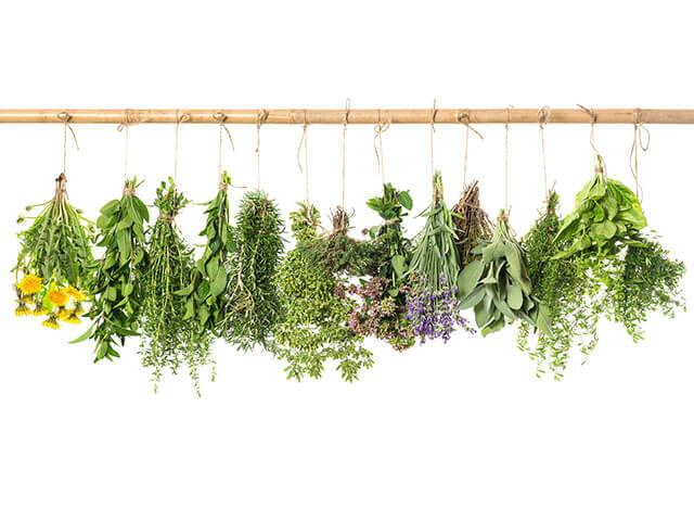 Nézzük is a gyógynövények listáját, amelyek a segítségedre lehetnek a fájós ízületek kezelésében.