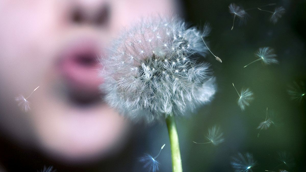 Itt az allergiaszezon!