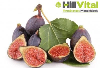 A fügelevéllel, akár a cukorbetegséget és a vérnyomást is kezelheted. Megannyi vitamint és ásványi anyagokat tartalmaz.