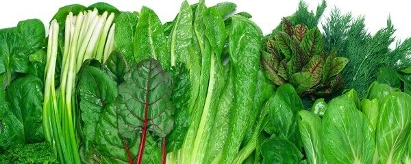 Miért pont a zöld növényeknek van a legtöbb szerepe a szervezet méregtelenítésében és lúgosításában? Most megtudhatod.