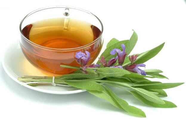Front elleni teák
