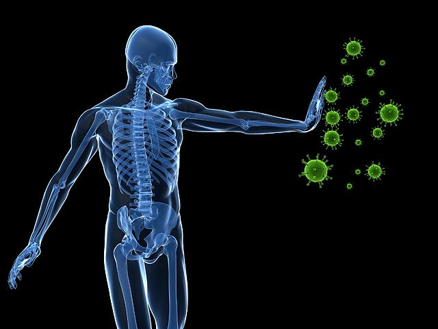 Az immunrendszerünkről