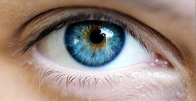 Érdekességek a szemről