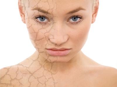 A bőr tulajdonságai