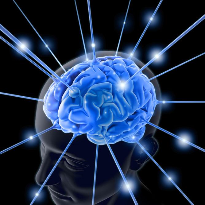 Tudnivalók az idegrendszerről.